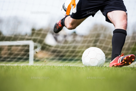 Goalkeeper kicking ball away from goalの素材 [FYI00002464]