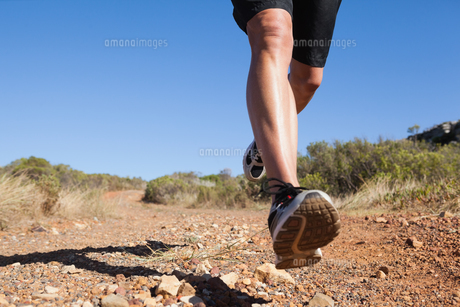 Athletic man jogging on country trailの素材 [FYI00002496]