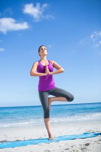 Brunette doing yoga on exercise matの素材 [FYI00006862]
