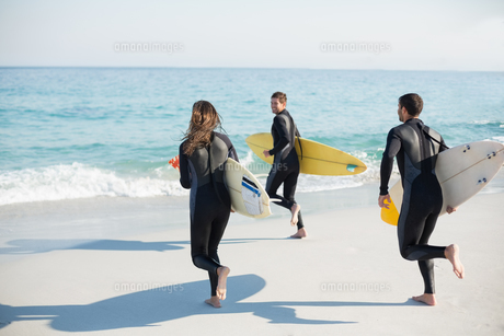 Group of friends on wetsuits with a surfboard on a sunny dayの素材 [FYI00007116]