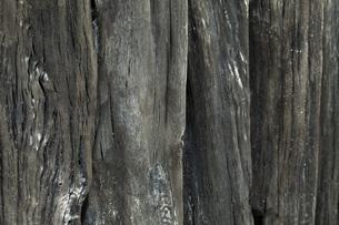木炭の素材 [FYI00025487]