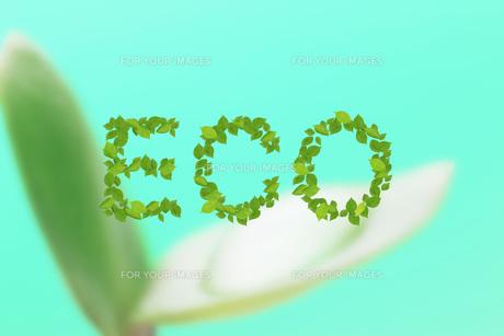 エコロジーイメージの素材 [FYI00045748]