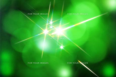 新緑と煌めきの素材 [FYI00045813]