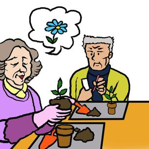 花苗を鉢に植える高齢者男女(園芸療法)の素材 [FYI00112856]