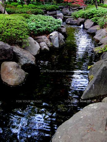 大田黒公園の川と岩場の素材 [FYI00112914]