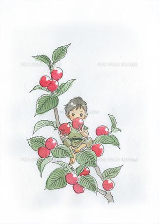 赤い実を食べる小人の素材 [FYI00116782]