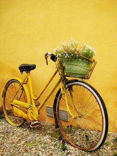 レモン色の自転車の素材 [FYI00169548]