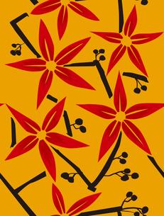 和柄、赤い花と実の素材 [FYI00227122]