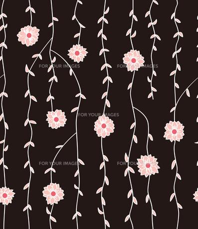 蔓植物と白い花の素材 [FYI00227143]