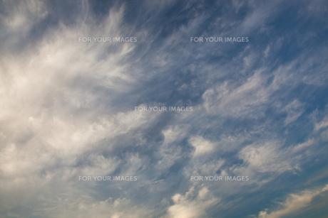 background[cirrostratus_sky]_042の素材 [FYI00446855]