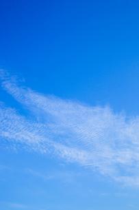 background[autumn_sky]_68の素材 [FYI00446862]