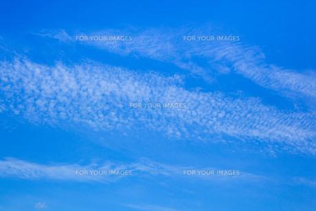 background[autumn_sky]_43の素材 [FYI00446867]