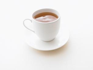 紅茶の素材 [FYI00470579]