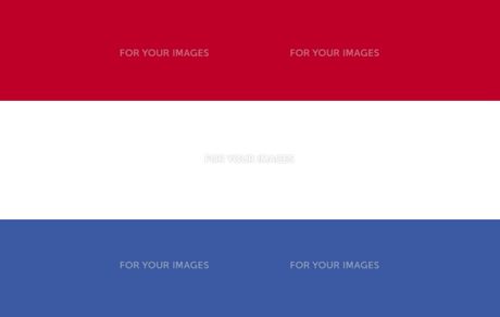 Ductch Flagの素材 [FYI00488173]