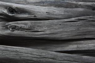 和歌山県産の備長炭の写真素材 [FYI00571927]