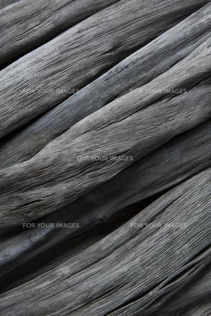 和歌山県産の備長炭の写真素材 [FYI00571929]