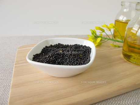 rapeseed and rapeseed oilの素材 [FYI00645346]