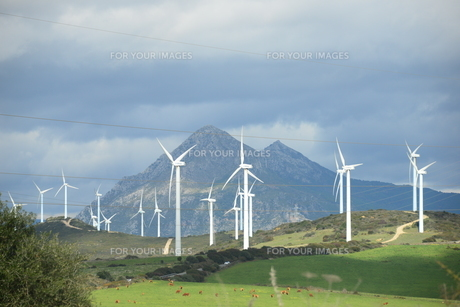 wind turbines in spain,wind energy,wind turbine,wind generator,energyの素材 [FYI00738574]