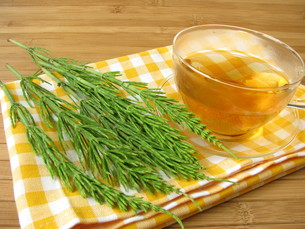 tea with field horsetailの素材 [FYI00807856]