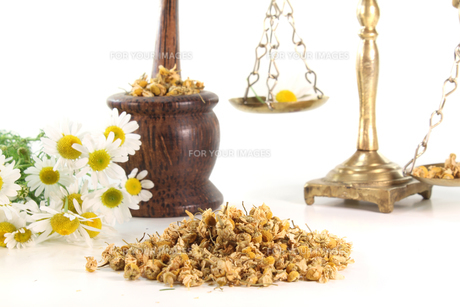 chamomile flowers with mortar and scalesの素材 [FYI00811390]