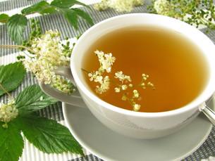meadowsweet teaの素材 [FYI00817596]