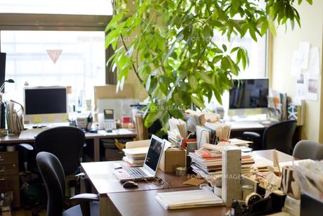 緑のあるオフィスの素材 [FYI00913612]