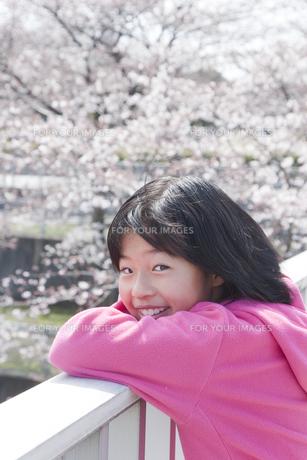 桜と笑顔の少女の素材 [FYI00977809]