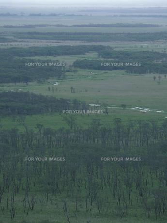 春の釧路湿原の素材 [FYI01015092]