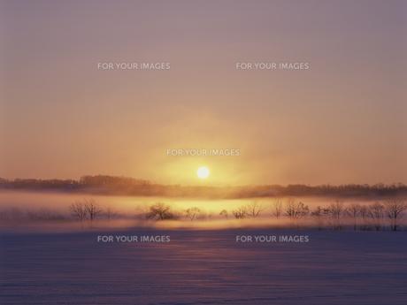 雪原と朝日の素材 [FYI01015487]