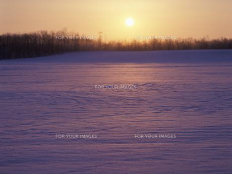 雪原と朝日の素材 [FYI01015551]
