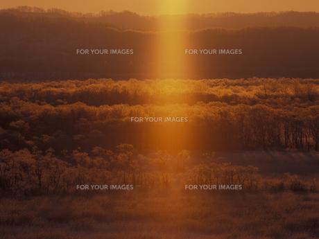 朝焼けに染まる釧路湿原の素材 [FYI01015623]
