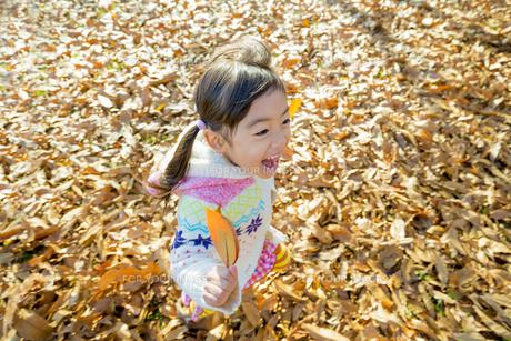 落葉の公園を葉っぱを持って走る女の子の素材 [FYI01075620]