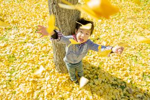 落葉の公園でイチョウの葉を投げる男の子の素材 [FYI01076066]