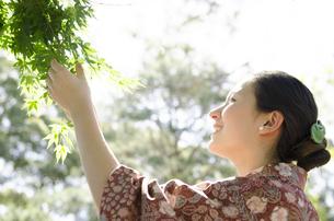 新緑のもみじを触る着物姿の横顔の女性の素材 [FYI01076692]