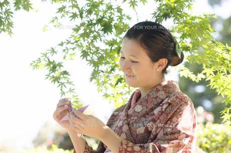 新緑のもみじをバックに折り鶴を見つめる着物姿の女性の素材 [FYI01076769]