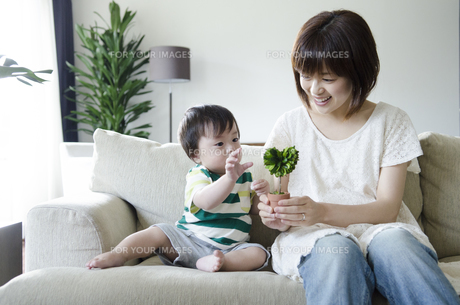 ハートの形の植物を持っている親子の素材 [FYI01077171]