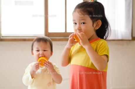 オレンジを食べている姉妹の素材 [FYI01077540]