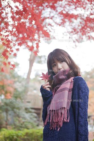 秋の公園で立っている女性の素材 [FYI01096662]