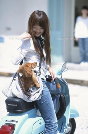 鞄に犬を入れてベスパに乗る女性の素材 [FYI01121998]