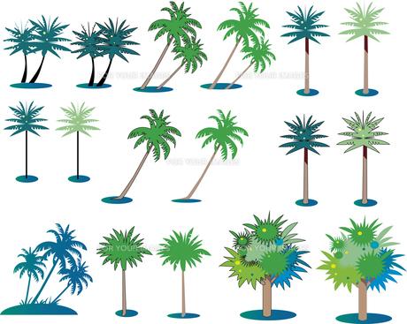 椰子の木のセットのイラスト素材 [FYI01186047]