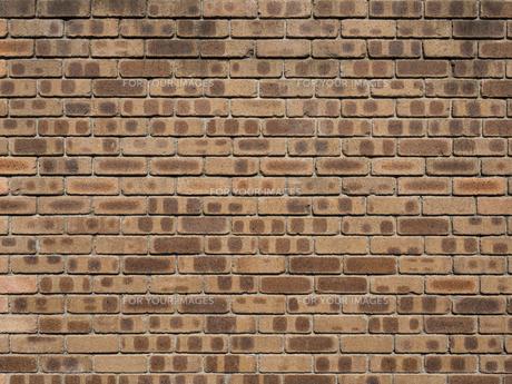 タイルの壁の写真素材 [FYI01202473]
