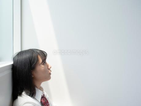 上を見上げる女子高校生の写真素材 [FYI01220692]