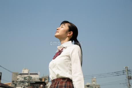 青空と女子高校生の写真素材 [FYI01220917]